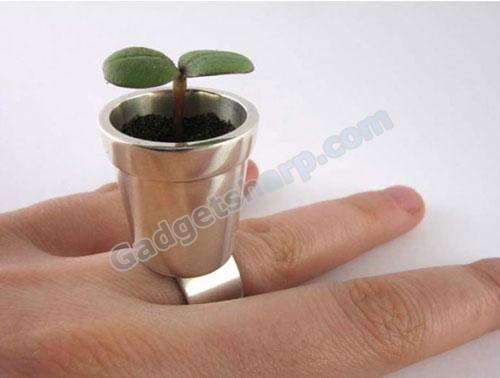Flower Pot Ring