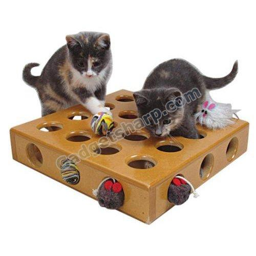 SmartCat Peek-A-Prize Cat Toy Box
