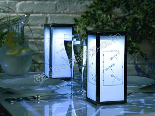 Frosted Dragonfly Solar Lantern