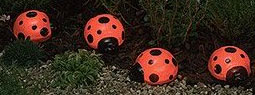 13 Eco and Beautiful Designs for Your Garden Decoration