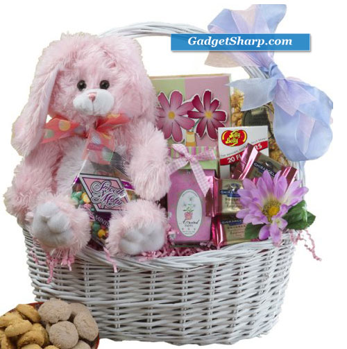 Special Easter Gift Basket PINK or PURPLE Bunny Rabbit