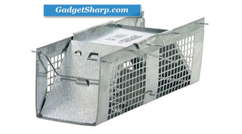 Two-Door 10-by-3-by-3-Inch Cage Trap for Mice