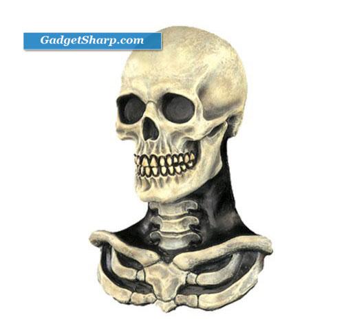 Skull & Bones Mask