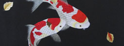 10 Koi Fish Inspired Products