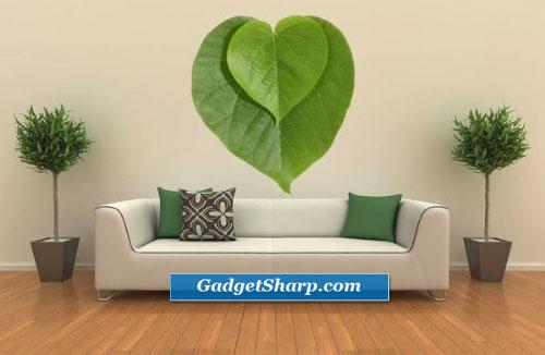 Leaf Shaped Product