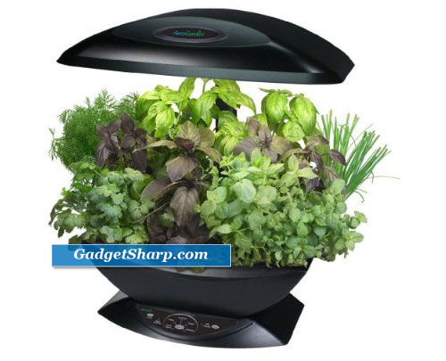 Best indoor herb garden kits gadget sharp for Indoor gardening gadgets