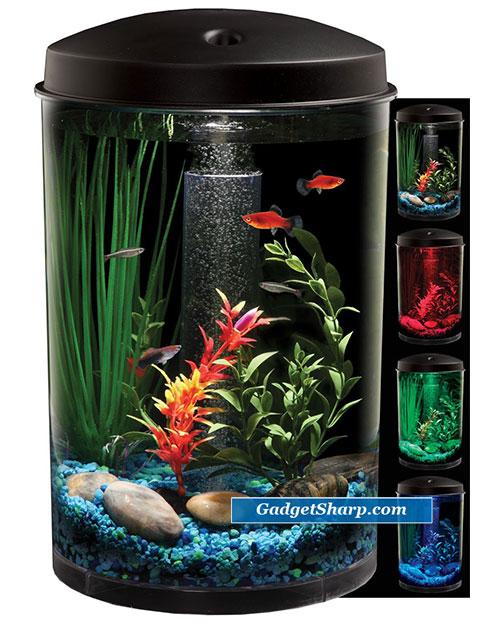Cool fish tanks amazon cool fish tanks rounded 5 gallon aquarium kit best selling fish 2017 - Fish tank coffee table amazon ...