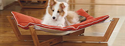 8 Cool and Modern Pet Furniture Designs