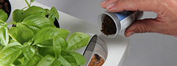 AquaFarm: Self-cleaning Fish Tank that Grows Plant
